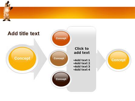 Kitten PowerPoint Template Slide 17