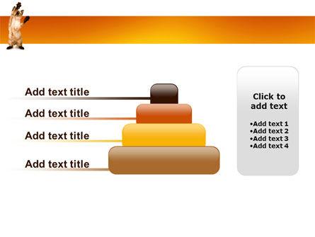 Kitten PowerPoint Template Slide 8