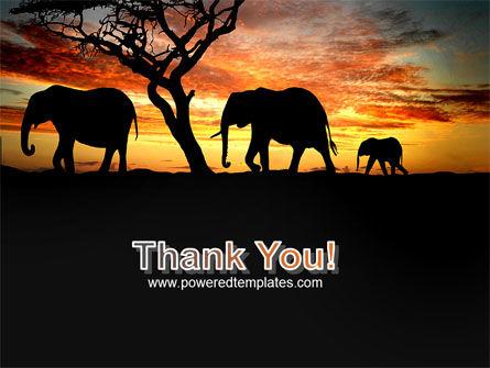 Savanna PowerPoint Template Slide 20