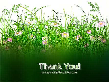 Wildflowers Field PowerPoint Template Slide 20