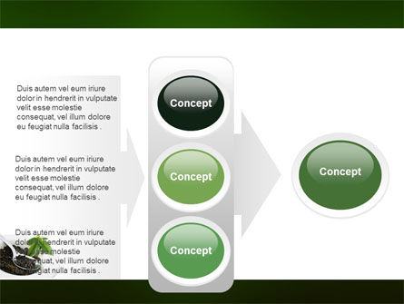 Green Tea Ceremony PowerPoint Template Slide 11