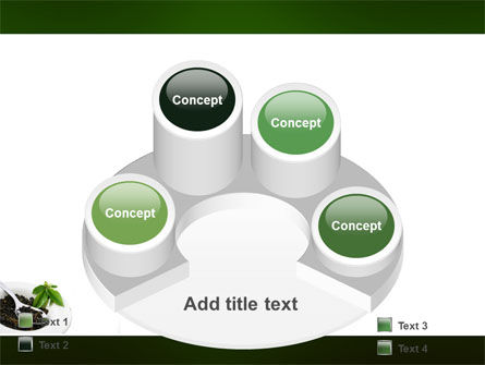 Green Tea Ceremony PowerPoint Template Slide 12