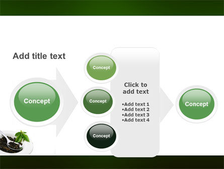 Green Tea Ceremony PowerPoint Template Slide 17