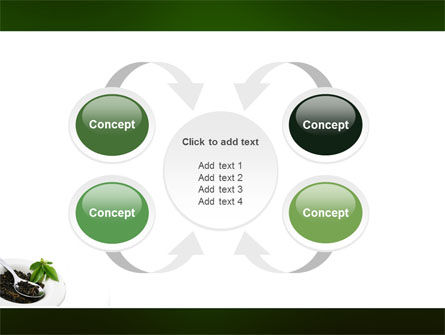 Green Tea Ceremony PowerPoint Template Slide 6