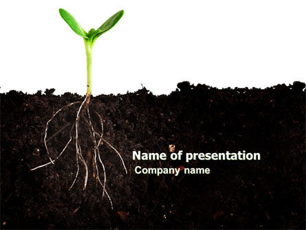 Life Sprouts PowerPoint Template, 03562, Nature & Environment — PoweredTemplate.com