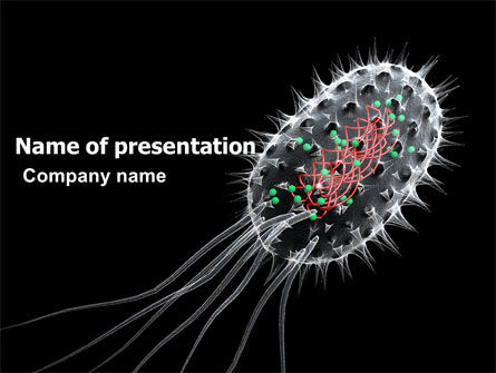 Bacteria Cell PowerPoint Template, 03573, Technology and Science — PoweredTemplate.com