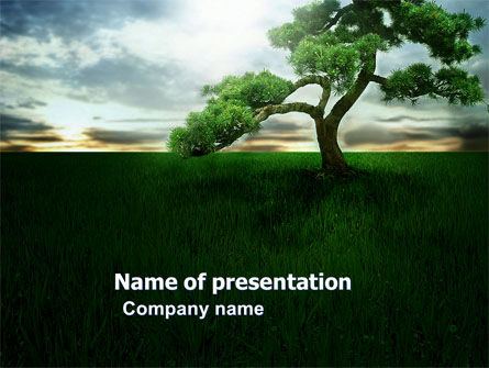 Nature & Environment: Solitary Tree PowerPoint Template #03585