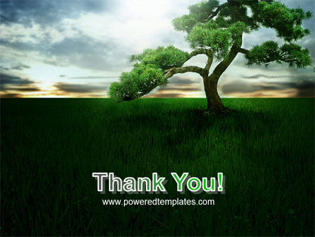 Solitary Tree PowerPoint Template Slide 20