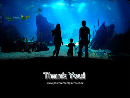 Oceanarium PowerPoint Template Slide 20