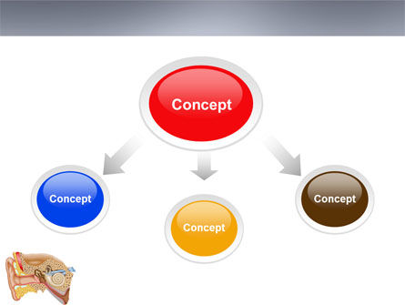 Auricle PowerPoint Template, Slide 4, 03631, Medical — PoweredTemplate.com