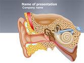 Medical: Modèle PowerPoint de auricule #03631