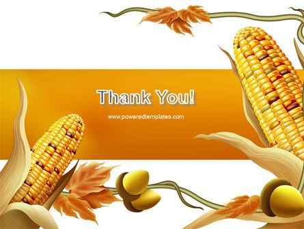 Harvest of Autumn PowerPoint Template Slide 20