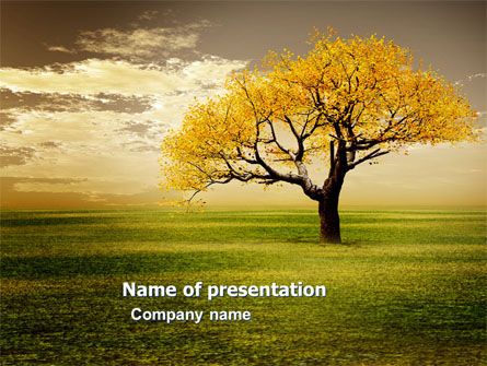 Yellow Tree In The Sunset In The Autumn PowerPoint Template