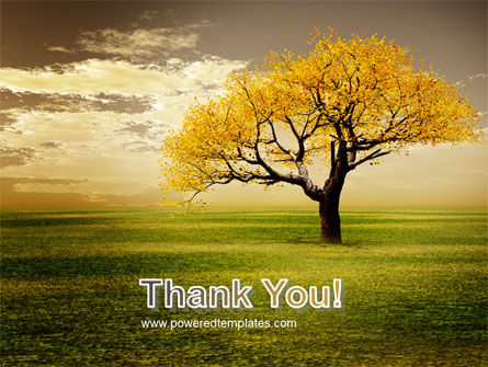 Yellow Tree In The Sunset In The Autumn PowerPoint Template Slide 20
