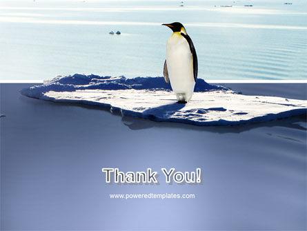 Penguin PowerPoint Template Slide 20