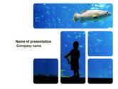 Nature & Environment: Public Aquaria PowerPoint Template #03810
