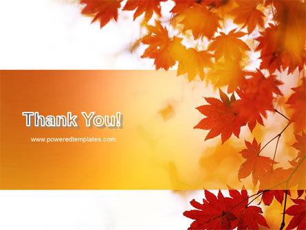 Autumn Season PowerPoint Template Slide 20