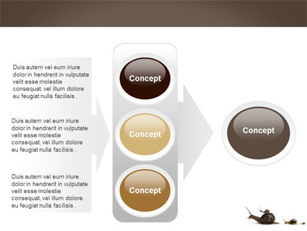 Snails On The Way PowerPoint Template Slide 11