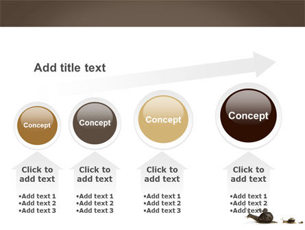 Snails On The Way PowerPoint Template Slide 13