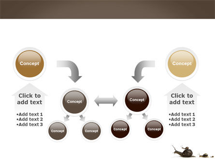Snails On The Way PowerPoint Template Slide 19