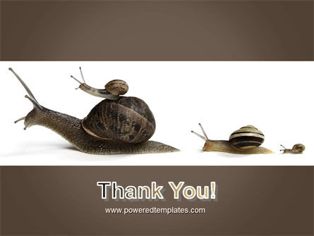 Snails On The Way PowerPoint Template Slide 20