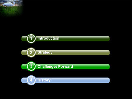 Egret PowerPoint Template, Slide 3, 04024, Animals and Pets — PoweredTemplate.com