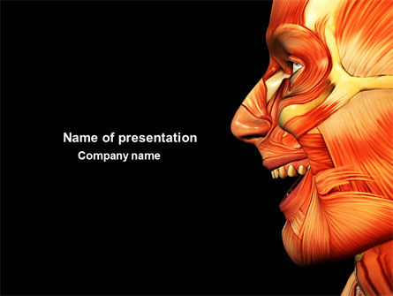 Facial Muscles PowerPoint Template, 04045, Medical — PoweredTemplate.com