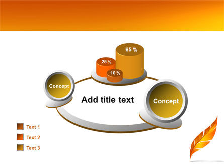 Feather In Orange Color PowerPoint Template Slide 16