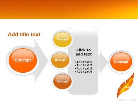 Feather In Orange Color PowerPoint Template Slide 17