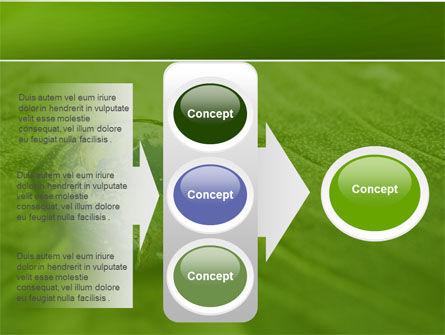 Water Drop PowerPoint Template Slide 11