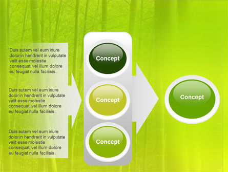 Bamboo Grove PowerPoint Template Slide 11