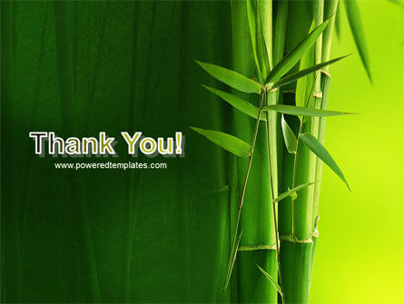 Bamboo Grove PowerPoint Template Slide 20