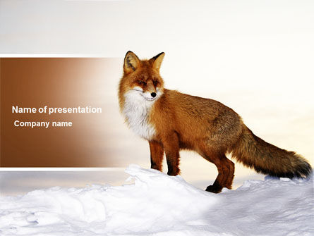 Red Fox PowerPoint Template, 04264, Animals and Pets — PoweredTemplate.com