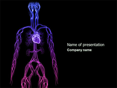 Cardiovascular System PowerPoint Template, 04281, Medical — PoweredTemplate.com