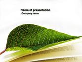 Education & Training: Modelo do PowerPoint - publicação #04304