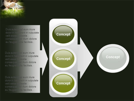 Nature Investigation PowerPoint Template Slide 11