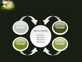 Nature Investigation PowerPoint Template#6