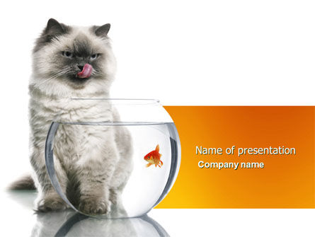 Business Concepts: Modèle PowerPoint de chat et poisson #04357