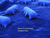 Medical: Salmonella PowerPoint Template #04408