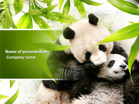 Animals and Pets: Plantilla de PowerPoint - panda #04479