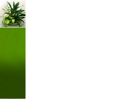 House Plant PowerPoint Template, Slide 3, 04513, Nature & Environment — PoweredTemplate.com