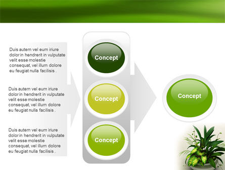 House Plant PowerPoint Template Slide 11