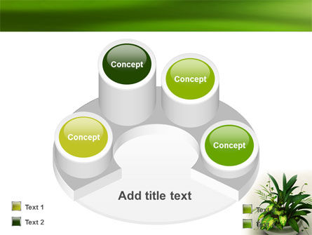 House Plant PowerPoint Template Slide 12
