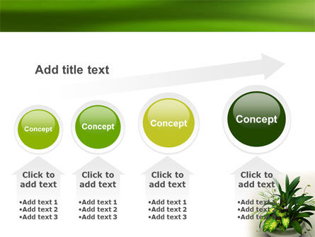 House Plant PowerPoint Template Slide 13