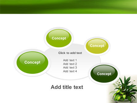 House Plant PowerPoint Template Slide 16