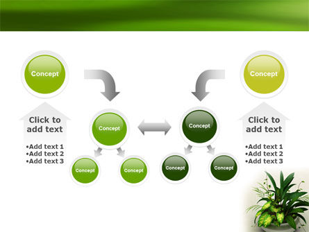House Plant PowerPoint Template Slide 19