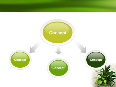 House Plant PowerPoint Template Slide 4