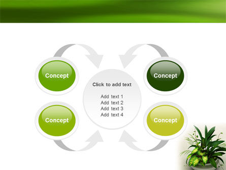 House Plant PowerPoint Template Slide 6