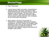 House Plant PowerPoint Template#2