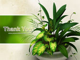 House Plant PowerPoint Template#20